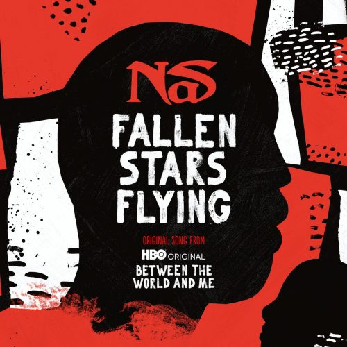 Nas Fallen Stars Flying