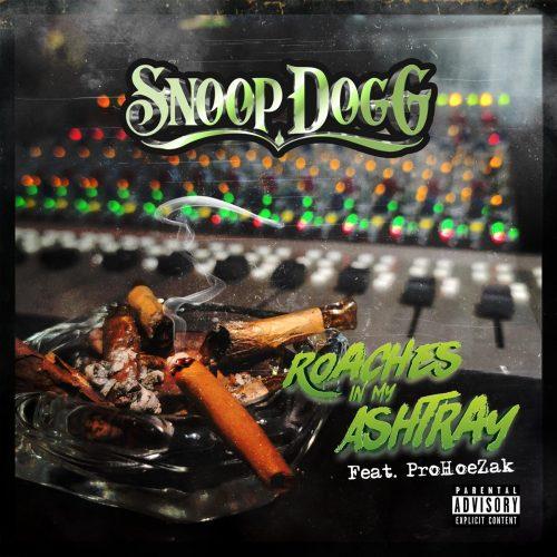 Snoop Dogg ProHoeZak Roaches In My Ashtray