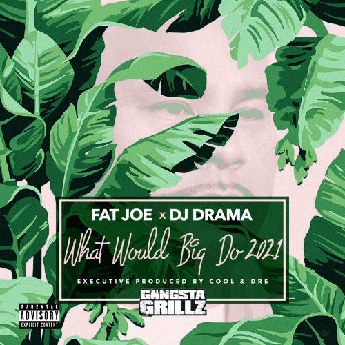 Fat Joe DJ Drama What Would Big Do 2021 album stream
